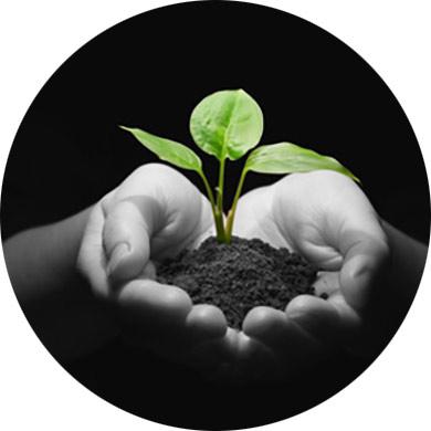 Programas especiales para empresas (Responsabilidad Social Corporativa)